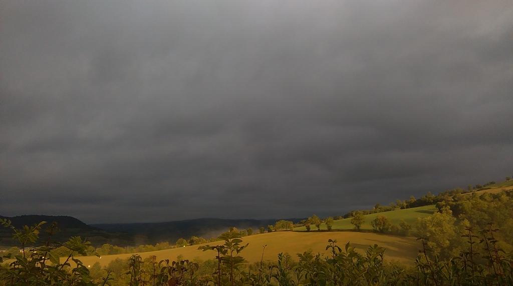 Temps gris n'empêche pas la photographie ! Sous la couverture nuageuse,  les herbes demeurent radieuses...