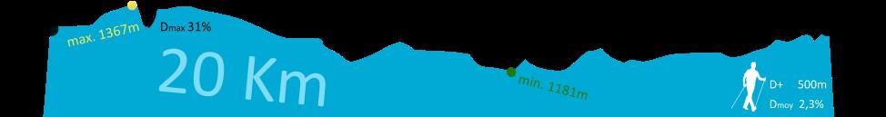 Profil bleu nordique